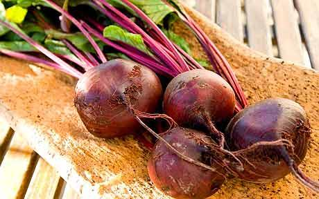 red-beetroot